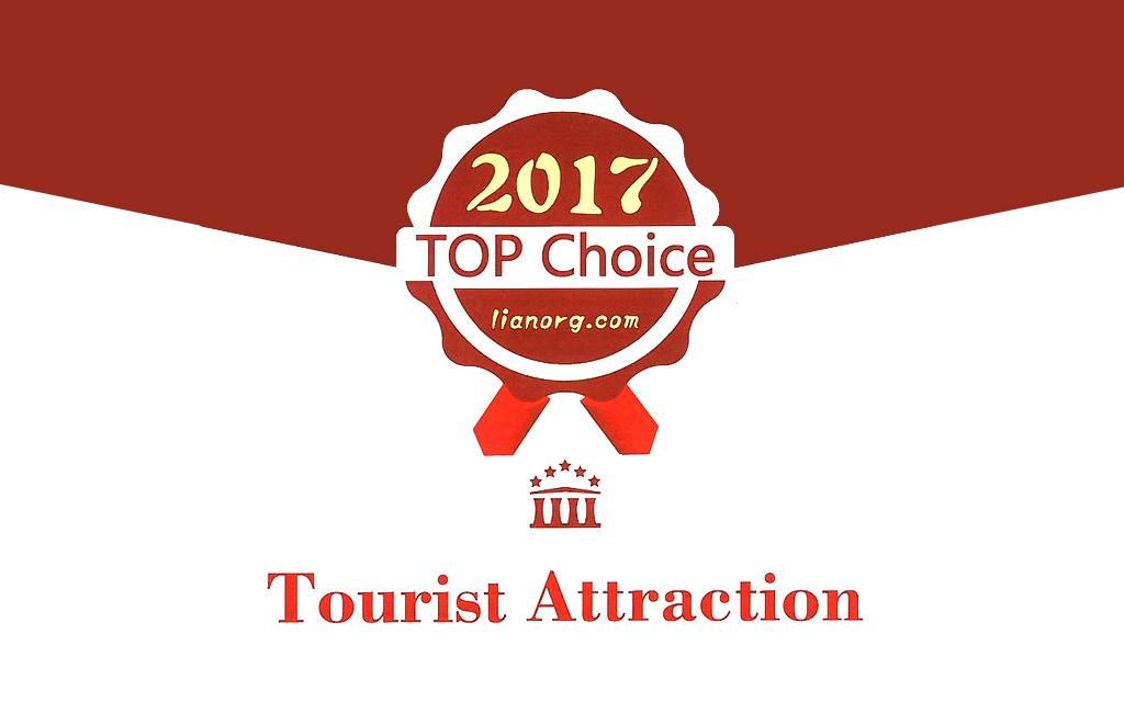 Top Choice 2017